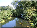 TM3590 : River Waveney by Adrian Cable