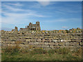NZ9011 : The ruins of Whitby Abbey by Pauline E