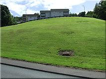 NS3174 : Glenhuntly Road by Thomas Nugent