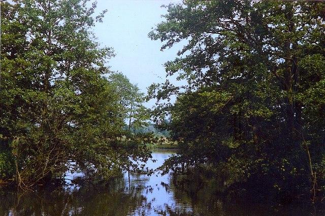 Yew Tree Lake, Waveney Valley Lakes