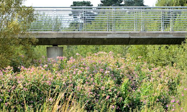 The Millennium footbridge, Ballymena (4)