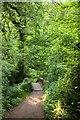 SS8945 : Footpath to Horner packhorse bridge by Steve Daniels