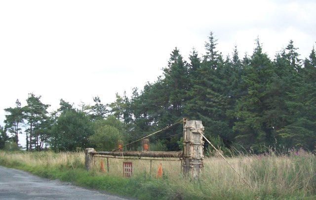 Disused Bord na Móna level crossing on the R357