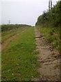 NZ8908 : Monk's Walk by Mick Garratt