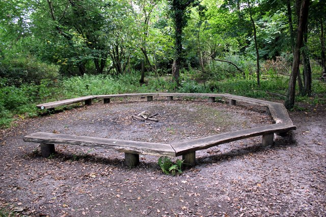 Story-telling circle in the woods