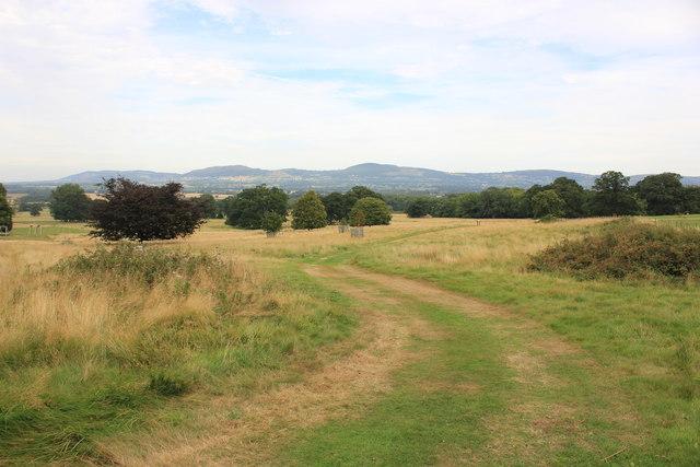 The Parkland at Bodelwyddan Castle