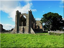 NU1241 : Ruins, Lindisfarne Priory by Bill Henderson