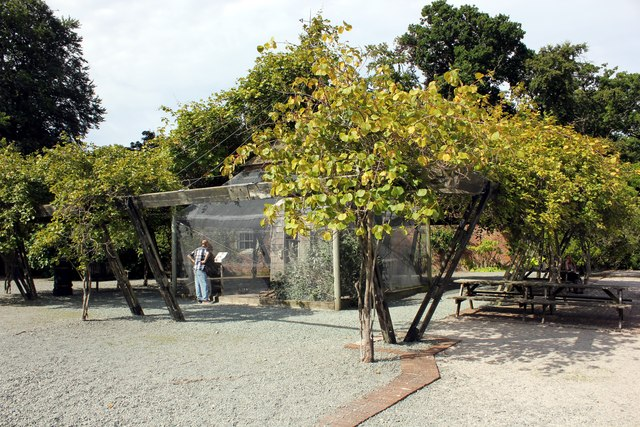 The Aviary at Bodelwyddan Castle