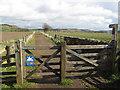 NT9931 : Pennine Cycleway near Doddington by Stephen Craven
