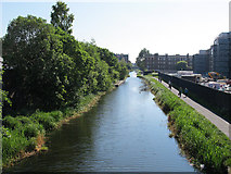 NT2472 : Union Canal looking west by Stephen Craven