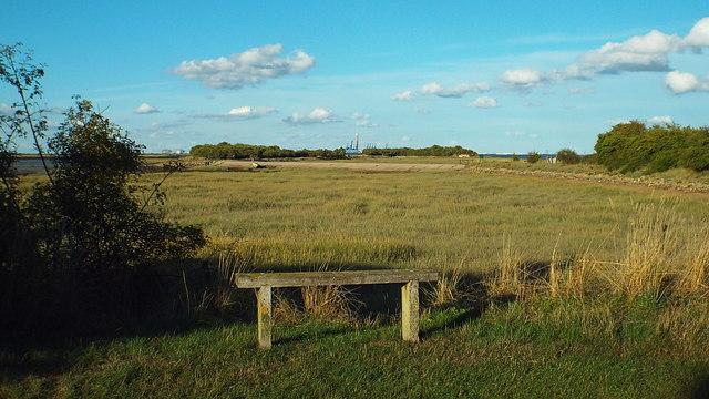 Riverside Country Park, near Gillingham