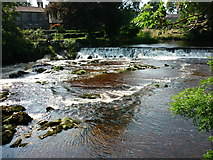 SE0063 : Linton Falls by Carroll Pierce