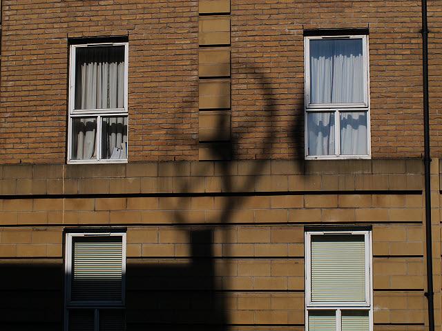 Shadow of a turbine