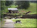 NU0602 : Steps down to a pumphouse at Cragside by Stanley Howe
