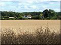 SU9649 : Blackwell Farm by Alan Hunt