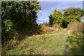 SU2832 : Footpath crossing on the Clarendon Way by David Martin