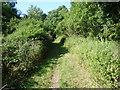 TQ1761 : Approach to Chessington Wood by Marathon