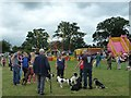 SJ1901 : Berriew Show - waiting for the dog show by Penny Mayes
