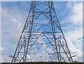 NT8836 : Pylons southwest of Branxton by Barbara Carr