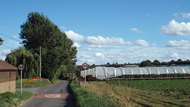 Bunters Hill Road, near Wainscott