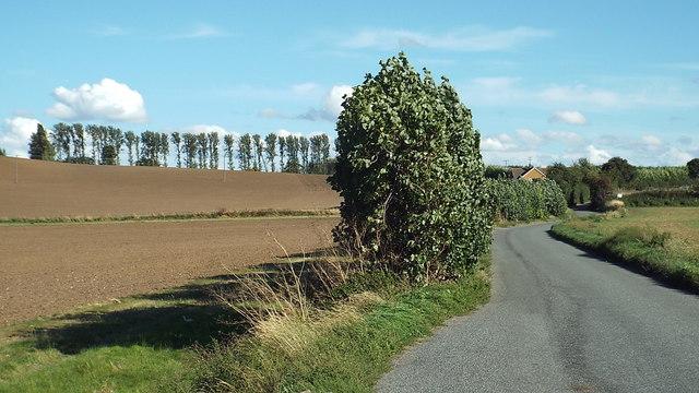 Lower Rochester Road, near Higham