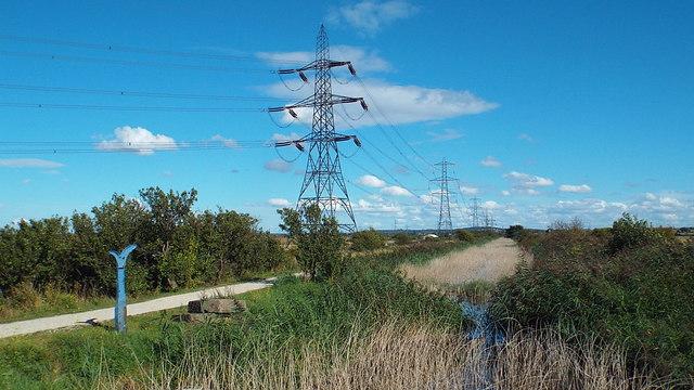 Eastcourt Marshes, near Gravesend