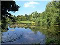 SU9099 : River Misbourne. Pond at Deep Mill by Des Blenkinsopp