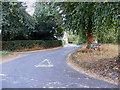 TM0981 : Baynard's Lane, Baynard's Green by Adrian Cable
