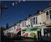 SX9265 : Reddenhill Road, Babbacombe by Derek Harper
