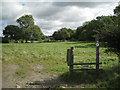 SP1270 : Redundant stile into a pasture by Robin Stott