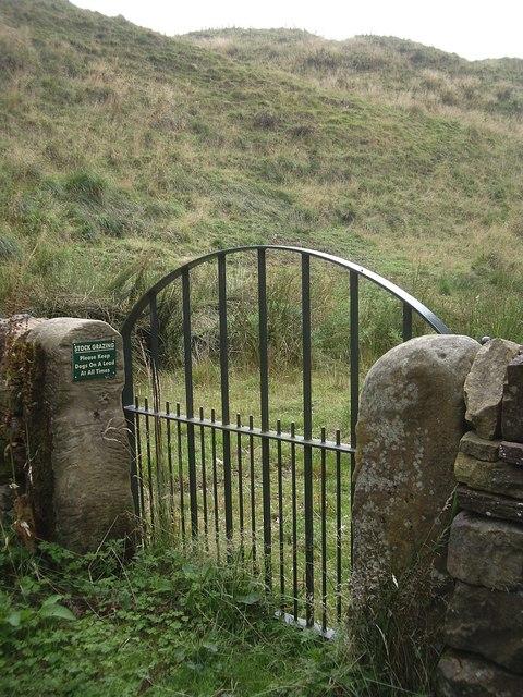 A pedestrian gateway to the Mote Hills, Elsdon