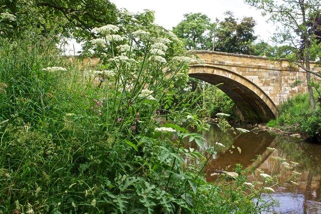 Bridge over River Esk, Egton Bridge