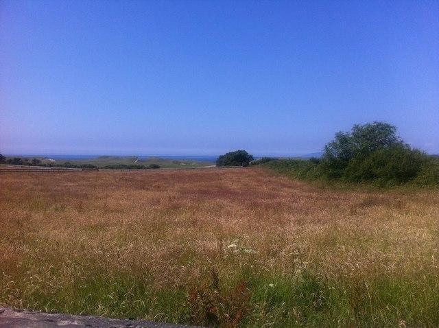 Grassland near Cliffony