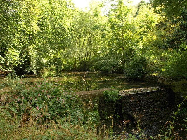 Artificial pond, Oldbury Stream