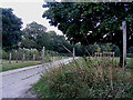 TM1080 : Footpath to Louie's Lane by Adrian Cable