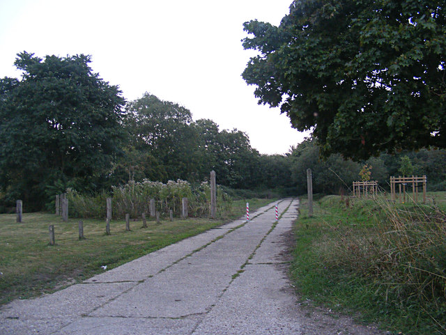 Footpath to Louie's Lane