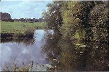 TG2105 : River Yare Marston Marshes by David Leeming