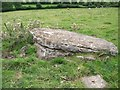 N0429 : Carved stone at Clonfinlough by Eric Jones
