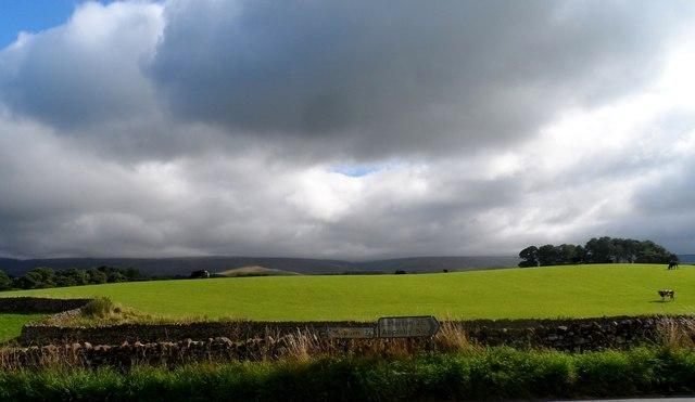 Near Gullom Holme