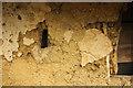 TF2557 : Mud & Stud by Richard Croft