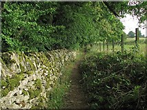 SP1726 : Upper Swell: wall, path and fence by John Sutton