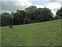 SP1726 : Upper Swell: footpath to Lower Swell by John Sutton
