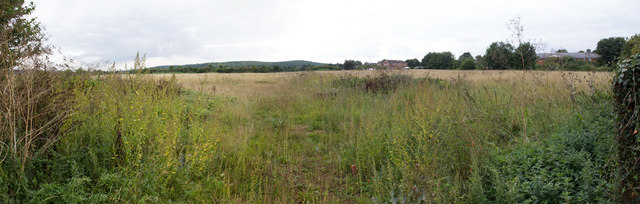 Fields south of Walton Road