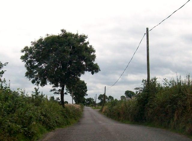 view south along belmont road at mough eric jones geograph ireland