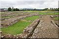 NY9864 : Corbridge Roman Site by David P Howard