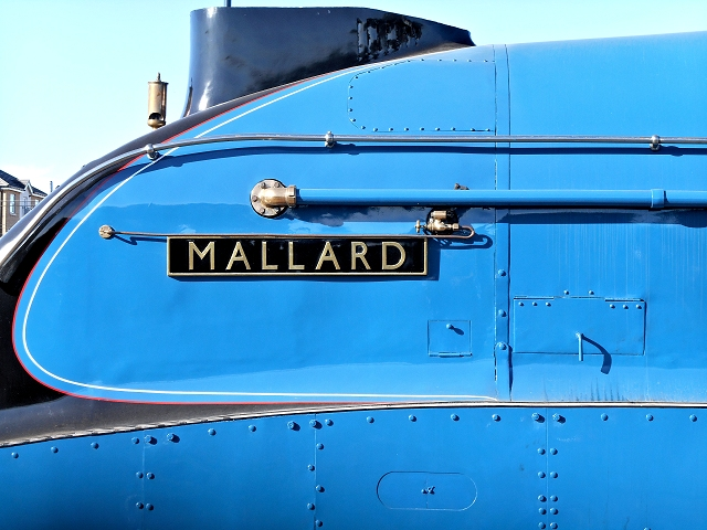 Mallard at the Festival of Speed
