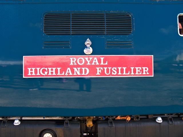 Royal Highland Fusilier