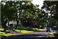 NZ1314 : Ovington village green by David Martin