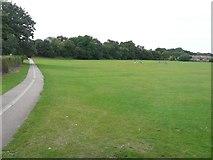 TR1458 : Beverley Meadow/St Stephen's Playing Field by John Baker