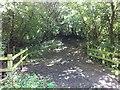 SS5828 : Cleave Lane bridge by Hugh Craddock